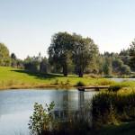 Spiegelauer Kurpark