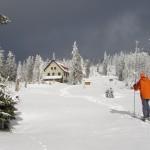 Winterwandern im Nationalpark Bayerischer Wald